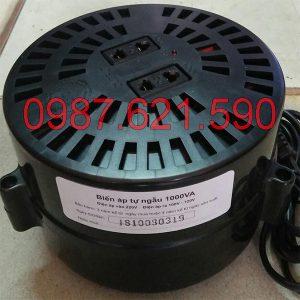 Bộ đổi nguồn 220V sang 110V/100V 1000VA Lioa