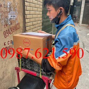 Máy nạp ắc quy LiOA BC-1815 2